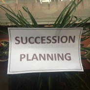 Assessing talent readiness through succession planning
