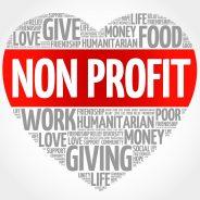 Non-profit consulting
