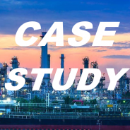 Case Study – HR audit for a petrochemical services firm