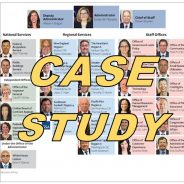 Case study – organizational design